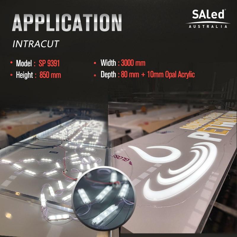 SA SP1W 1W 12V 6500K (20 modules / unit)